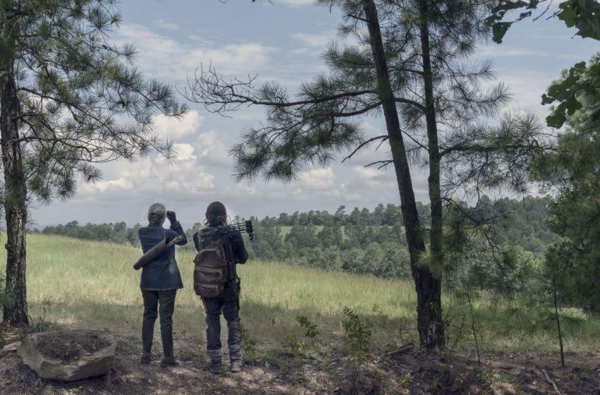 Norman Reedus as Daryl Dixon, Melissa McBride as Carol Peletier; group - The Walking Dead _ Season 10, Episode 6 - Photo Credit: Jace Downs/AMC