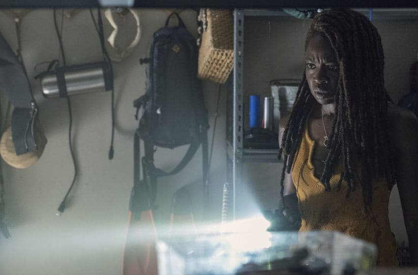 Danai Gurira as Michonne - The Walking Dead _ Season 10, Episode 13 - Photo Credit: Eliza Morse/AMC