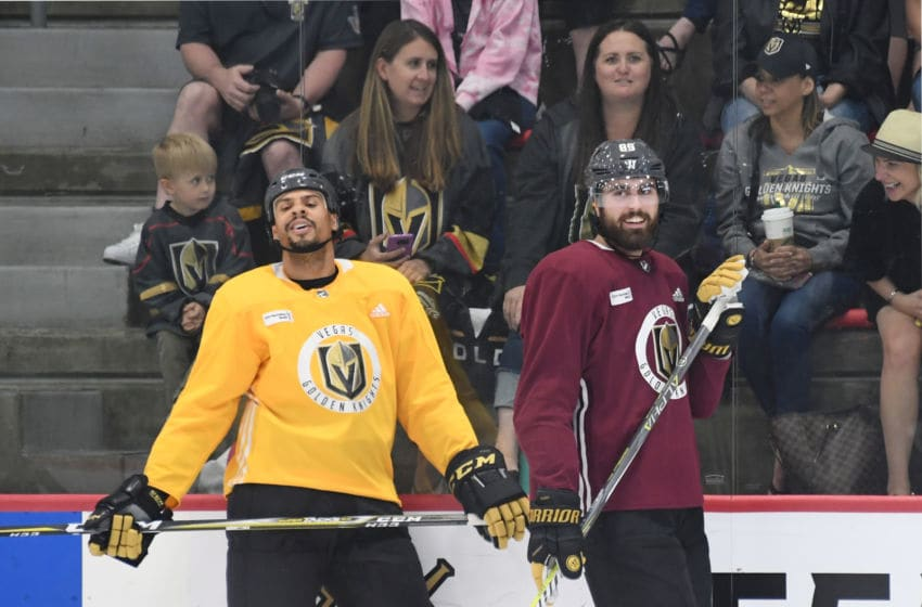 Ryan Reaves (L) #75 and Alex Tuch #89 of the Vegas Golden Knights. (Photo by Ethan Miller/Getty Images)