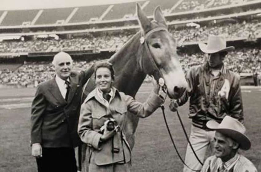 Charlie O the Mule, the famous mascot mule of the A's, was named after the team's stubborn owner, Charles O. Finley. Photo courtesy of the Finley Family