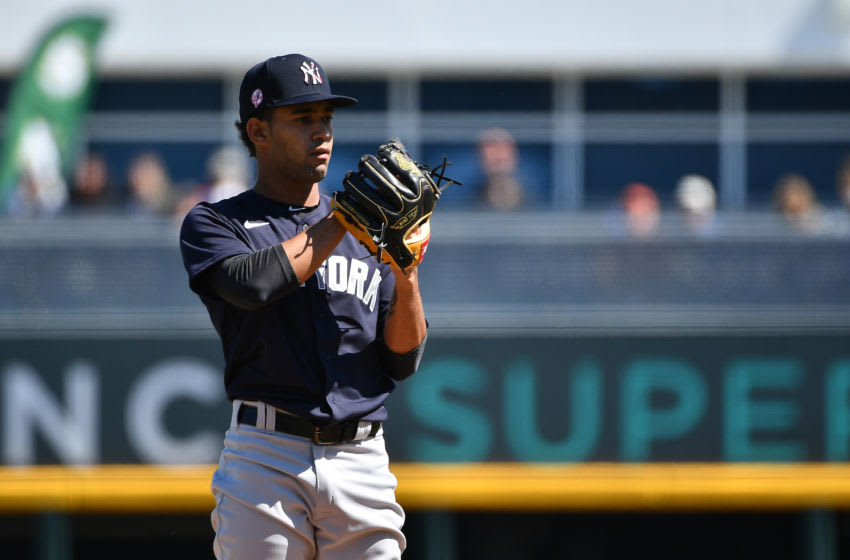 Deivi Garcia #83 of the New York Yankees (Photo by Mark Brown/Getty Images)