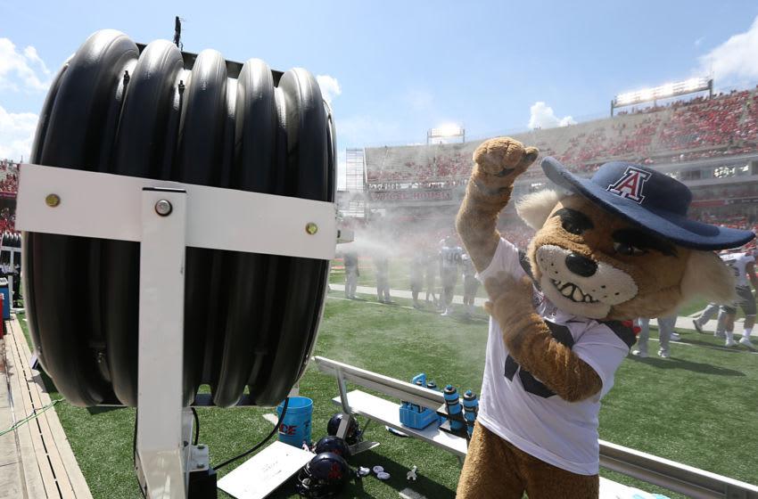 HOUSTON, TX - SEPTEMBER 8: Arizona Wildcats mascot