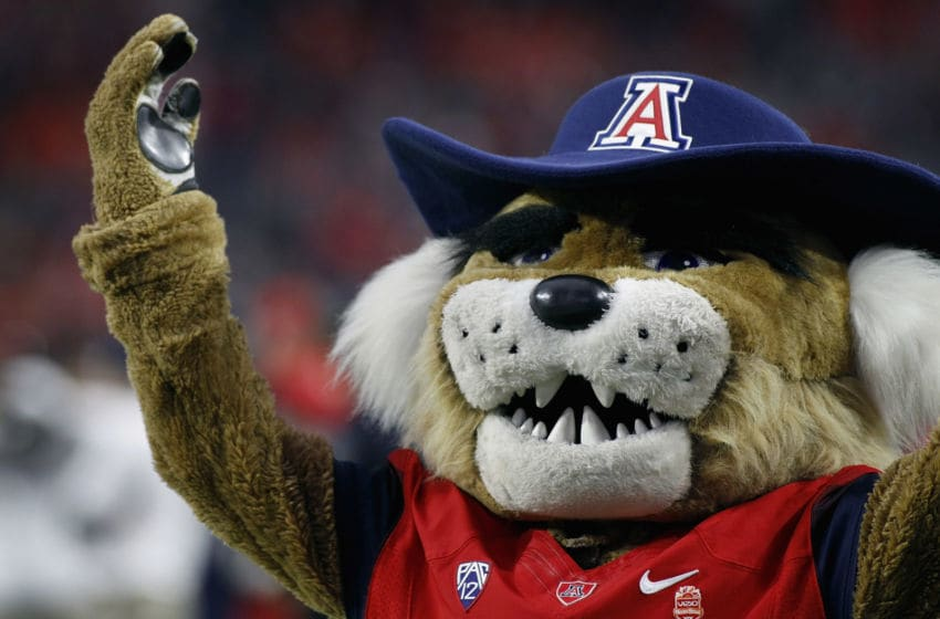 GLENDALE, AZ - DECEMBER 31: Mascot Wilbur the Wildcat gets the crowd going during the start of the Vizio Fiesta Bowl game between the Arizona Wildcats and Boise State Broncos at University of Phoenix Stadium on December 31, 2014 in Glendale, Arizona. (Photo by Ralph Freso/Getty Images)