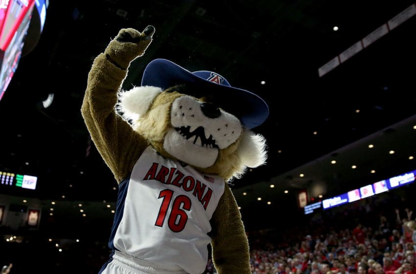 TUCSON, AZ - NOVEMBER 13: Arizona Wildcats mascot Wilbur the Wildcat dances during the first half of the college basketball game against the Pacific Tigers at McKale Center on November 13, 2015 in Tucson, Arizona. (Photo by Chris Coduto/Getty Images)