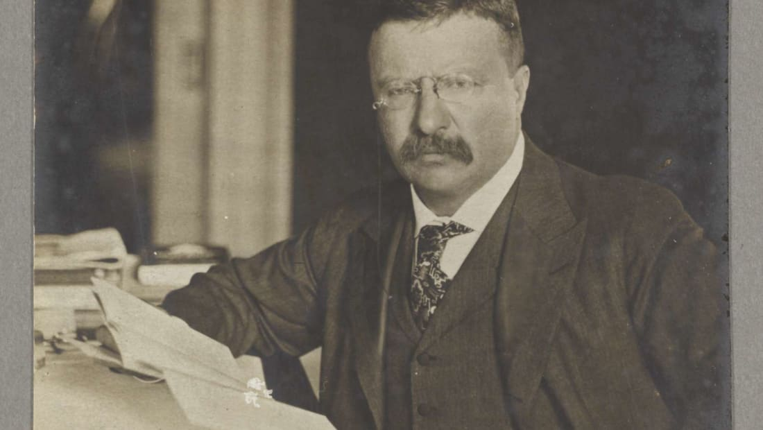 Theodore Roosevelt would want you to transcribe these letters.