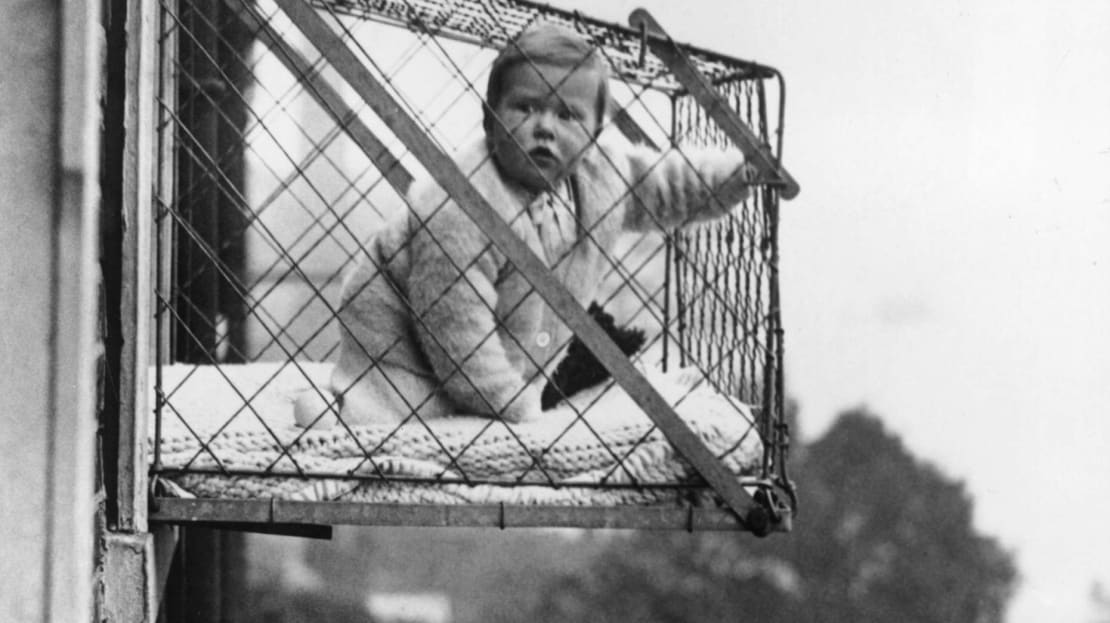 Nothing to see here—just a baby in a cage hanging out a window, taking in the air!