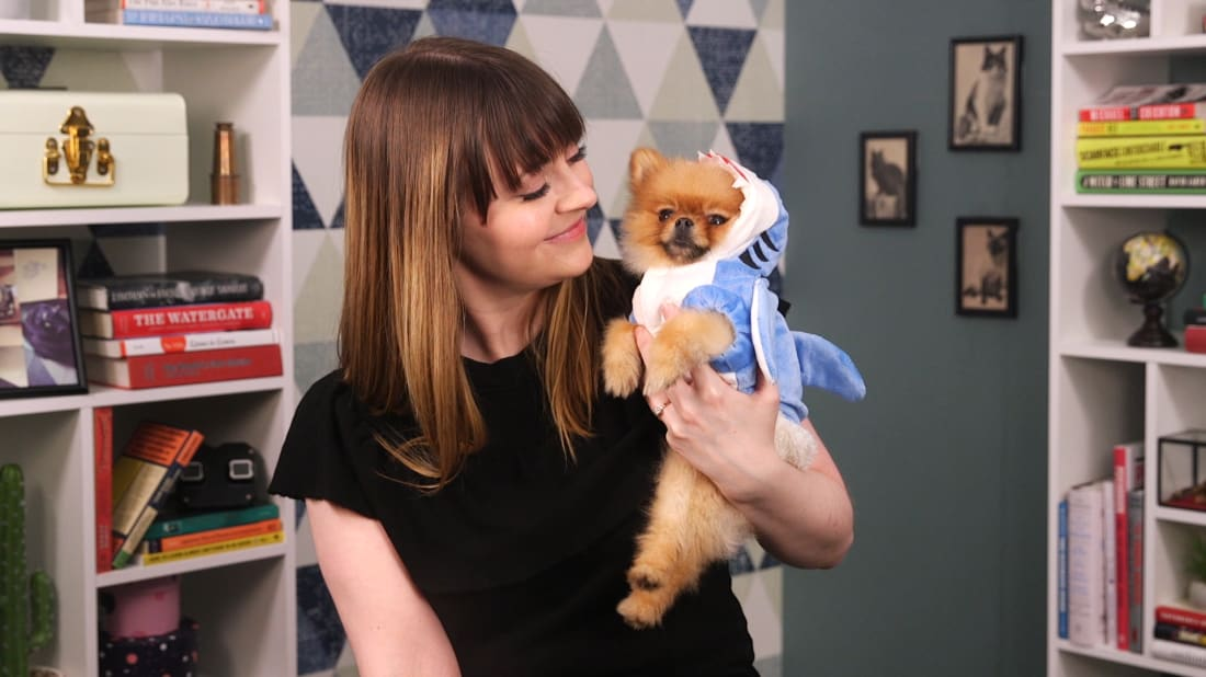 Simba, the world's most adorable Pomeranian, hosts The List Show. Some enamored human being helps … we think her name is Erin McCarthy.