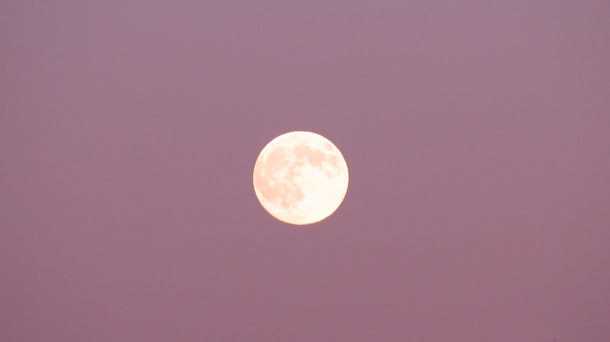 A Full Pink Moon Is Coming in April | Mental Floss