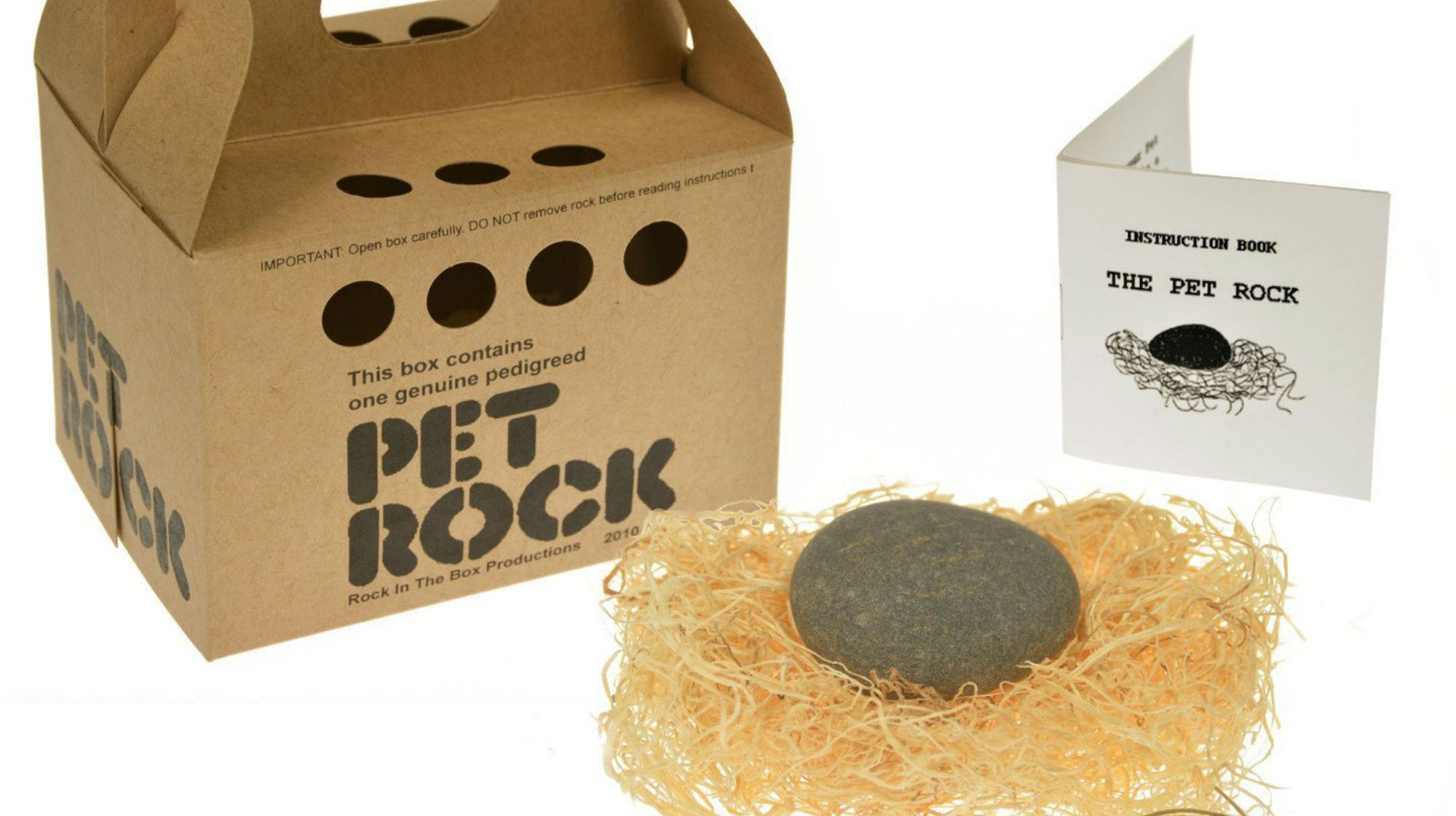 Hard Sell: A History of the Pet Rock