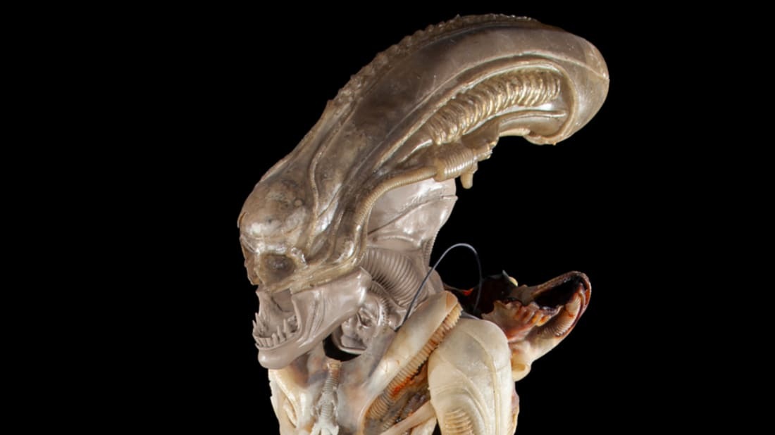 An early Xenomorph design from 1979's Alien is up for auction.