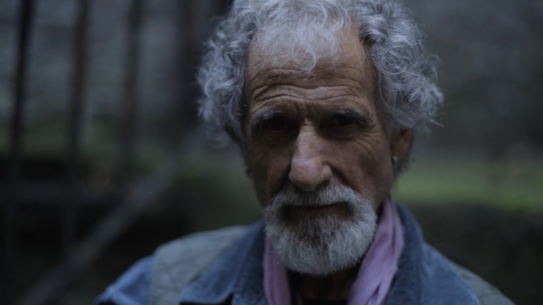 A still from Frank Serpico (2017).
