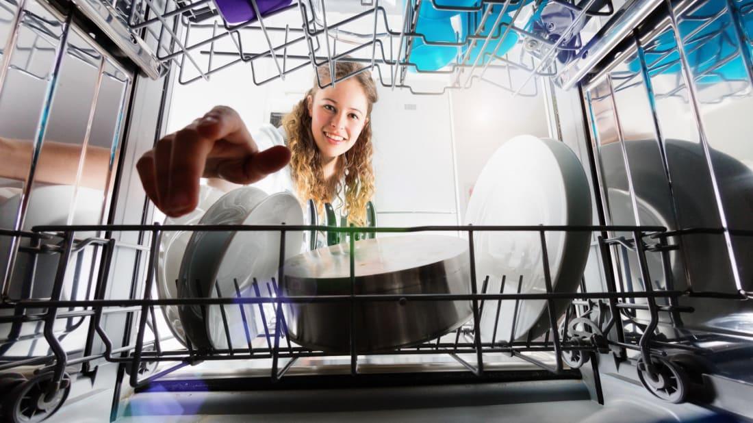 Dishwashers can do more than just plates.