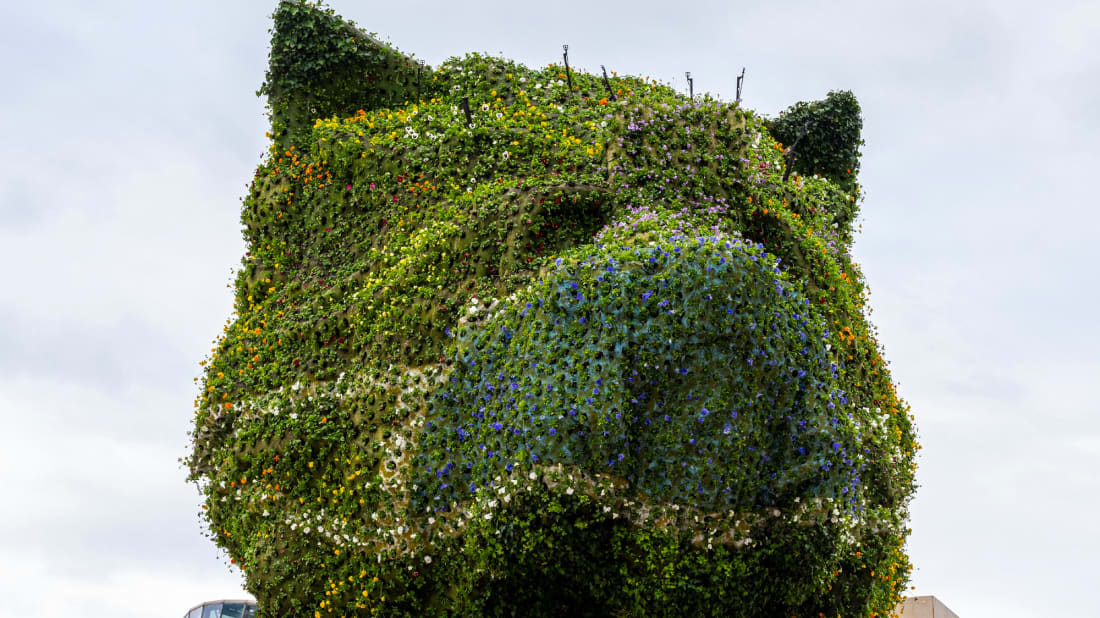 Puppy by artist Jeff Koons is now sporting a face mask.