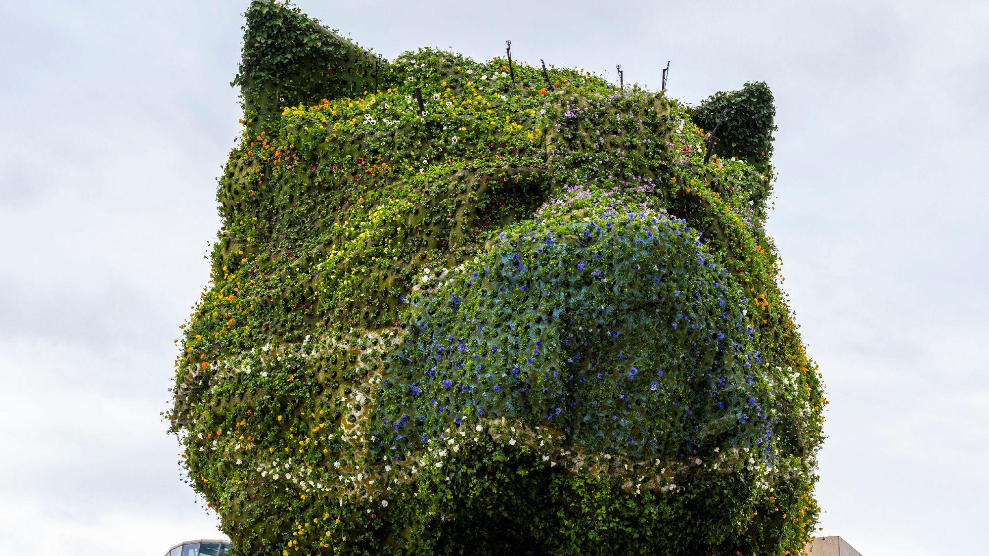 Jeff Koons's <em>Puppy</em> Sculpture, at the Guggenheim Museum Bilbao, Is Donning a Face Mask