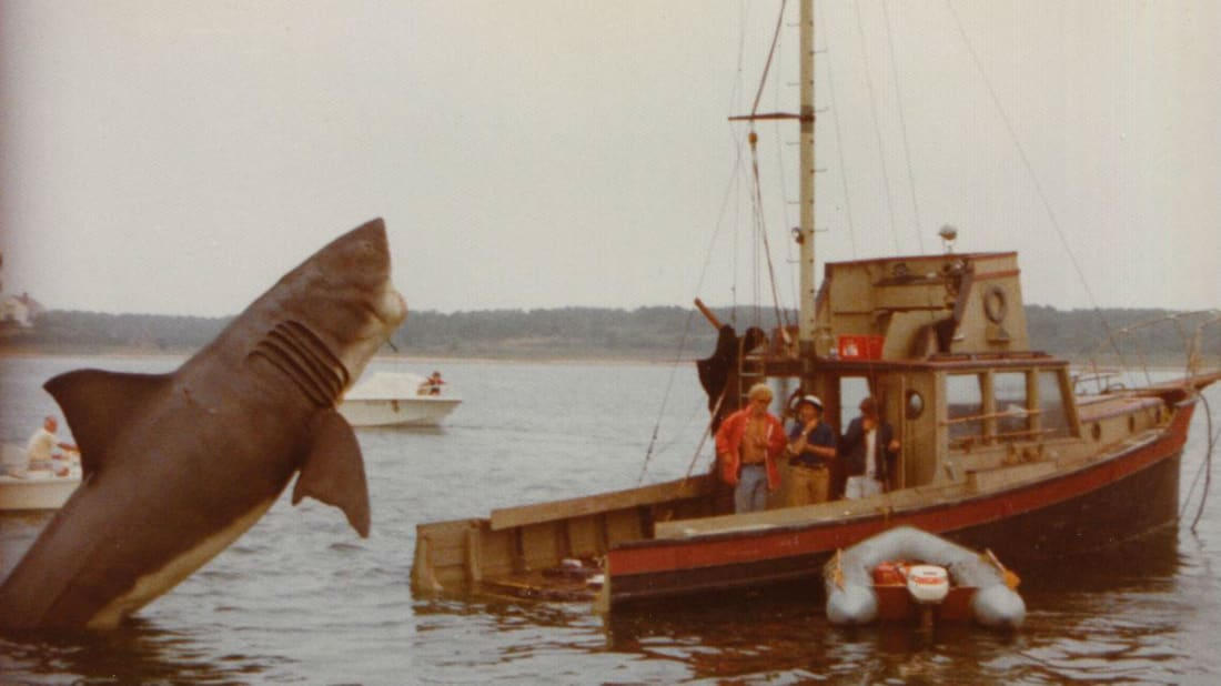 The Bizarre Tale of the Orca II, the Stunt Boat from Jaws