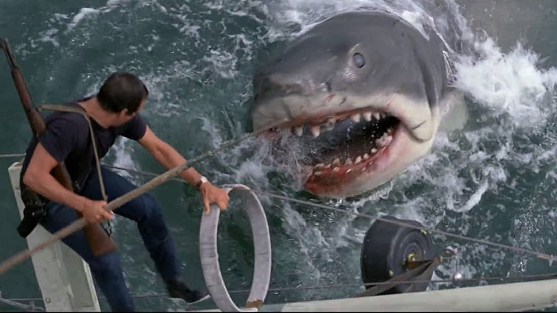 Roy Scheider is gonna need a bigger boat in Steven Spielberg's Jaws (1975).