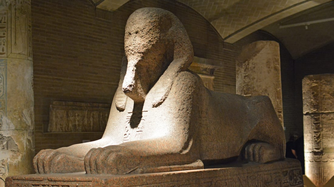 The giant sphinx at the Penn Museum