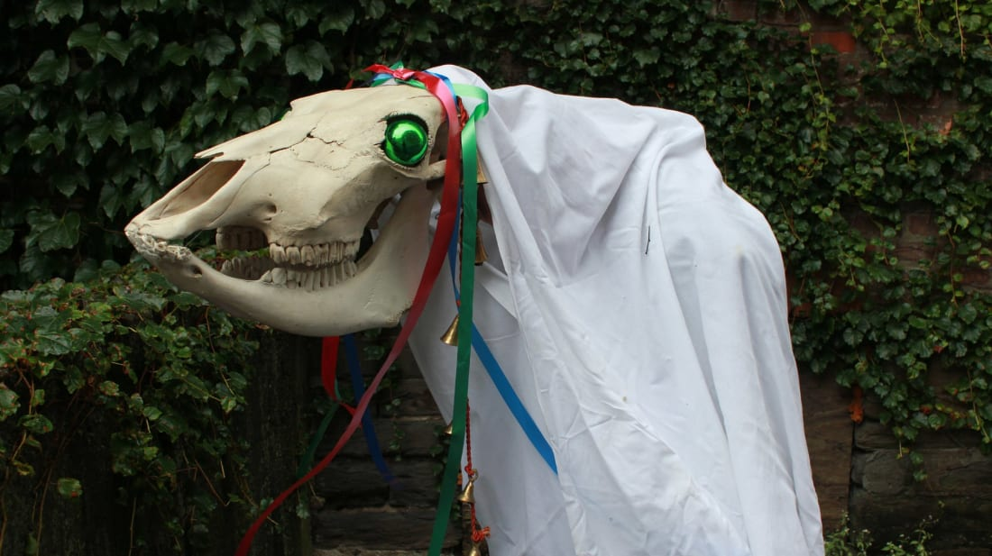 A Mari Lwyd—a ghostly horse figure brought door-to-door between Christmas and New Year's Eve in Wales