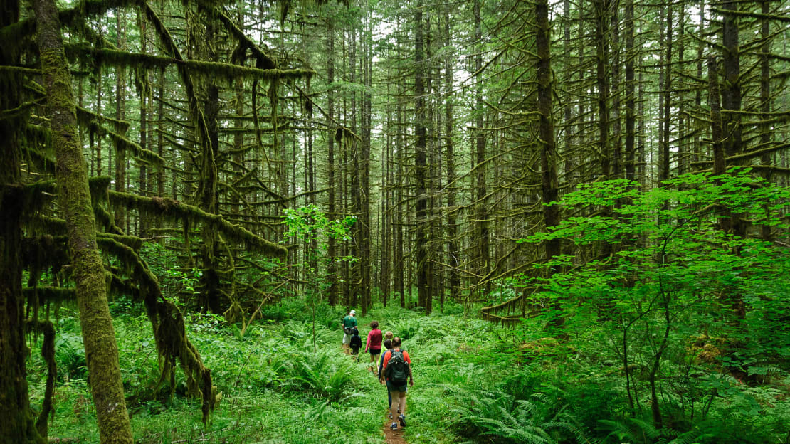 These hikers's gut microbes are running the show.
