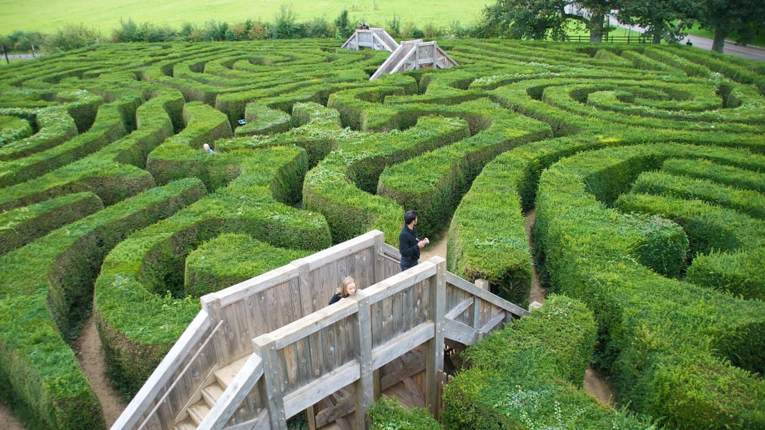 The Longleat hedge maze