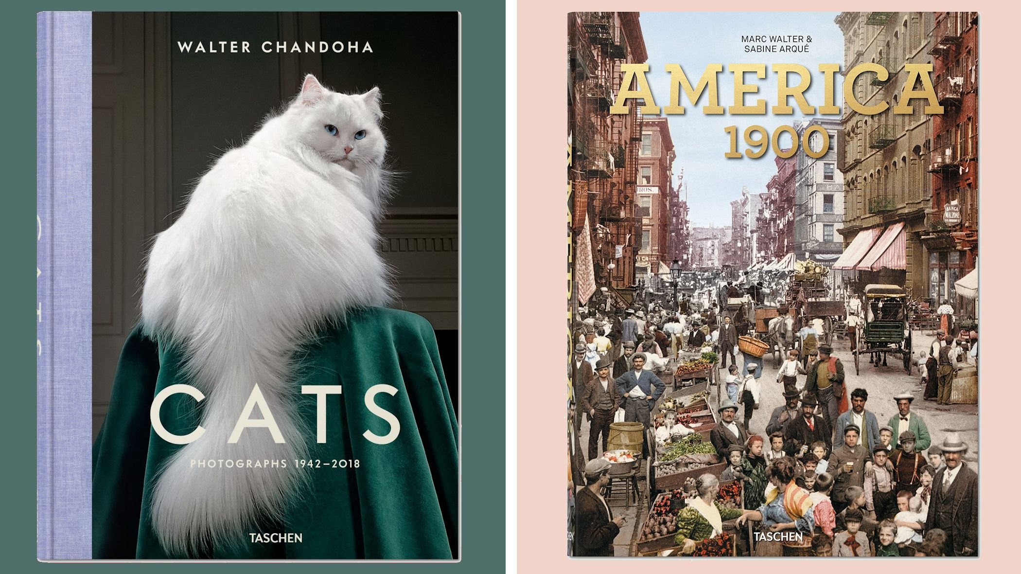 Best Coffee Table Books for Anyone on Your Christmas List ...
