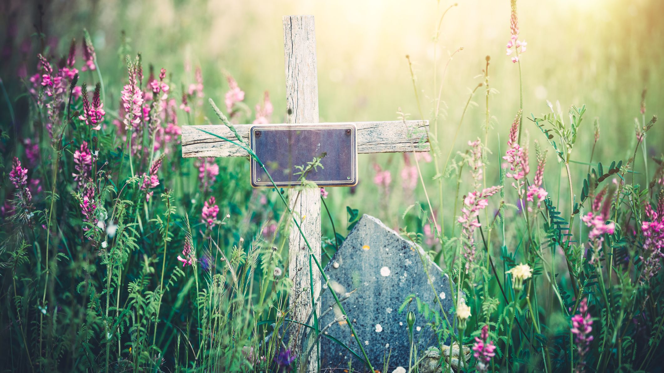 7 Eco-Friendly Options for Your Body After Death | Mental Floss