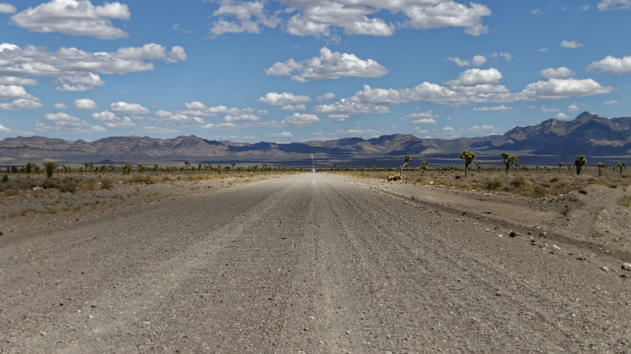 10 Out of This World Facts About Area 51