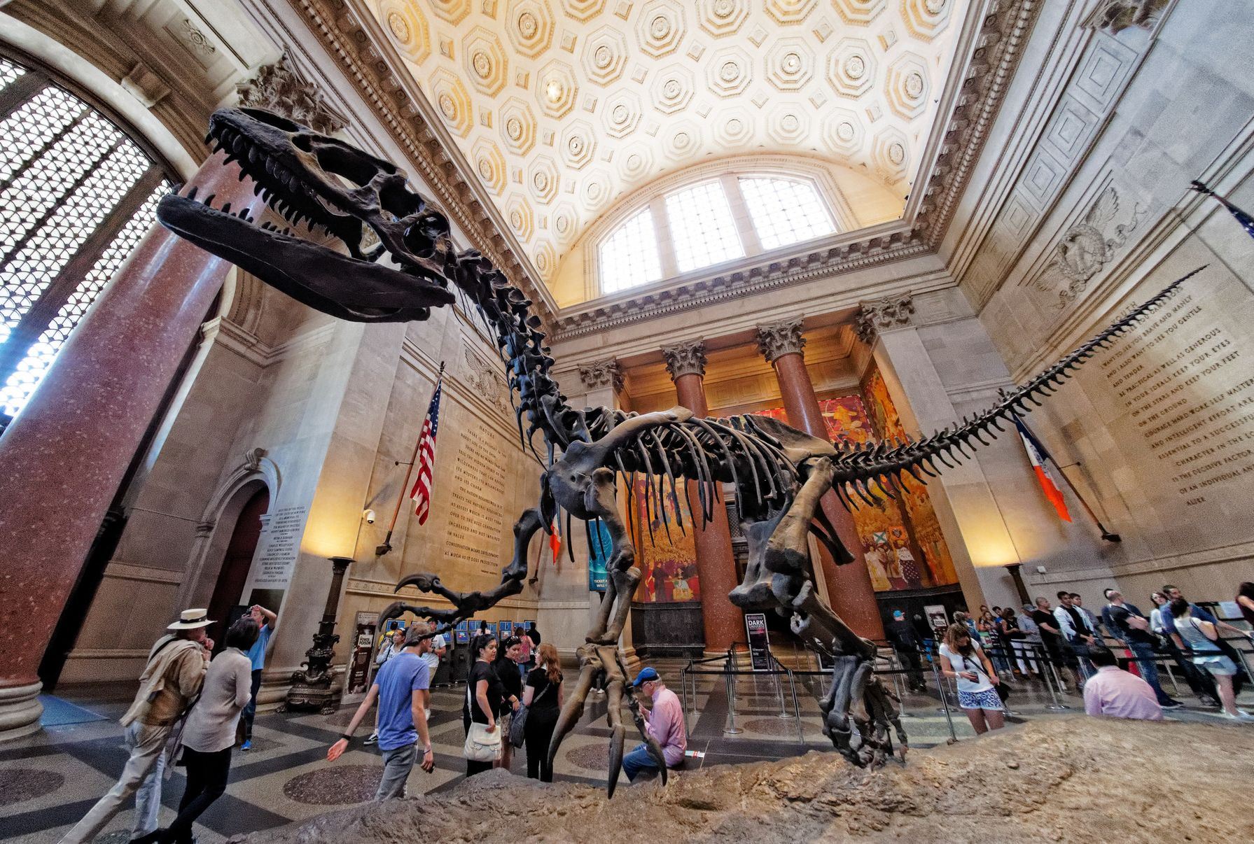 american museum of natural history free last hour