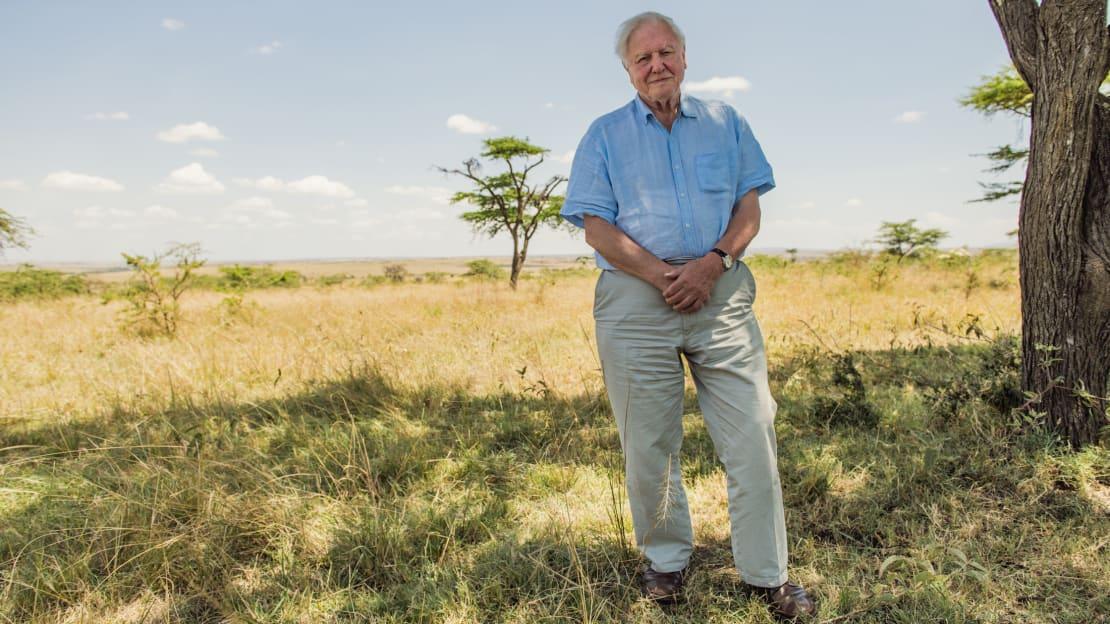 Sir David Attenborough pictured in the Maasai Mara, Kenya, in David Attenborough: A Life on Our Planet (2020).