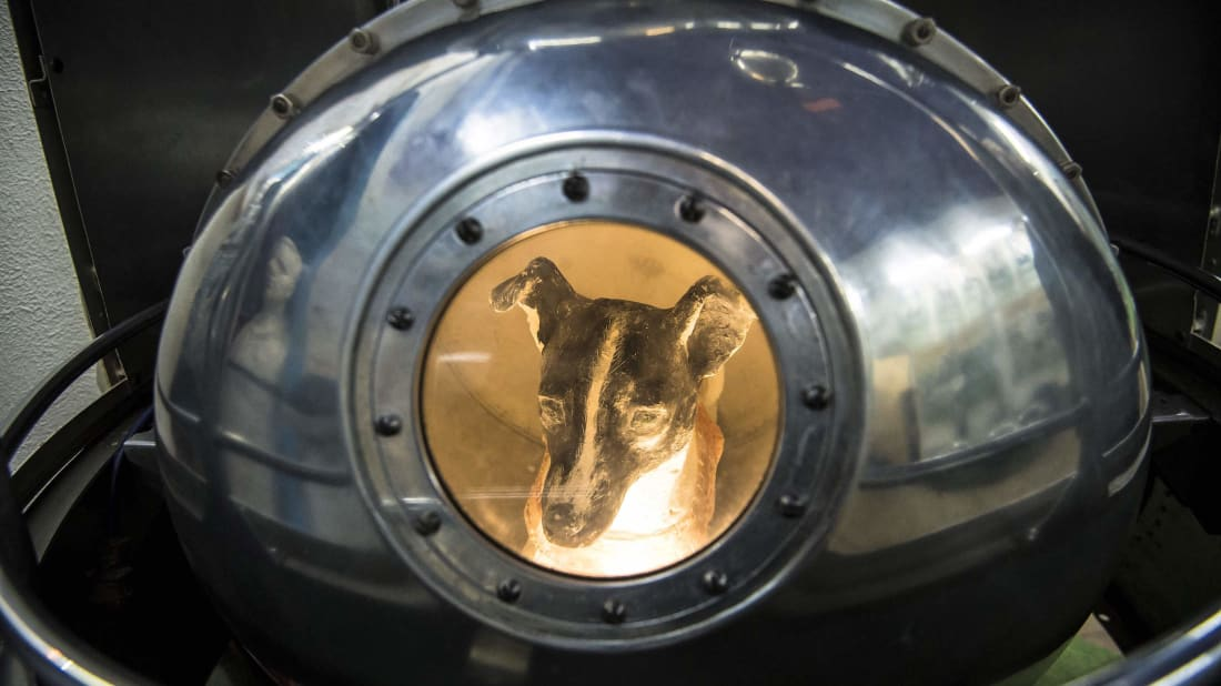 An effigy of Laika, the first living creature in space, inside a replica of satellite Sputnik II