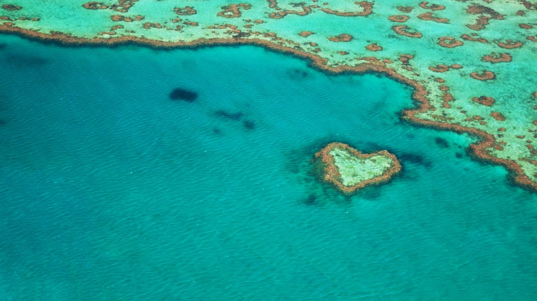 An aerial view of Australia's Heart Reef.