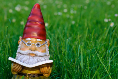 Garden gnomes are scarce in the UK.