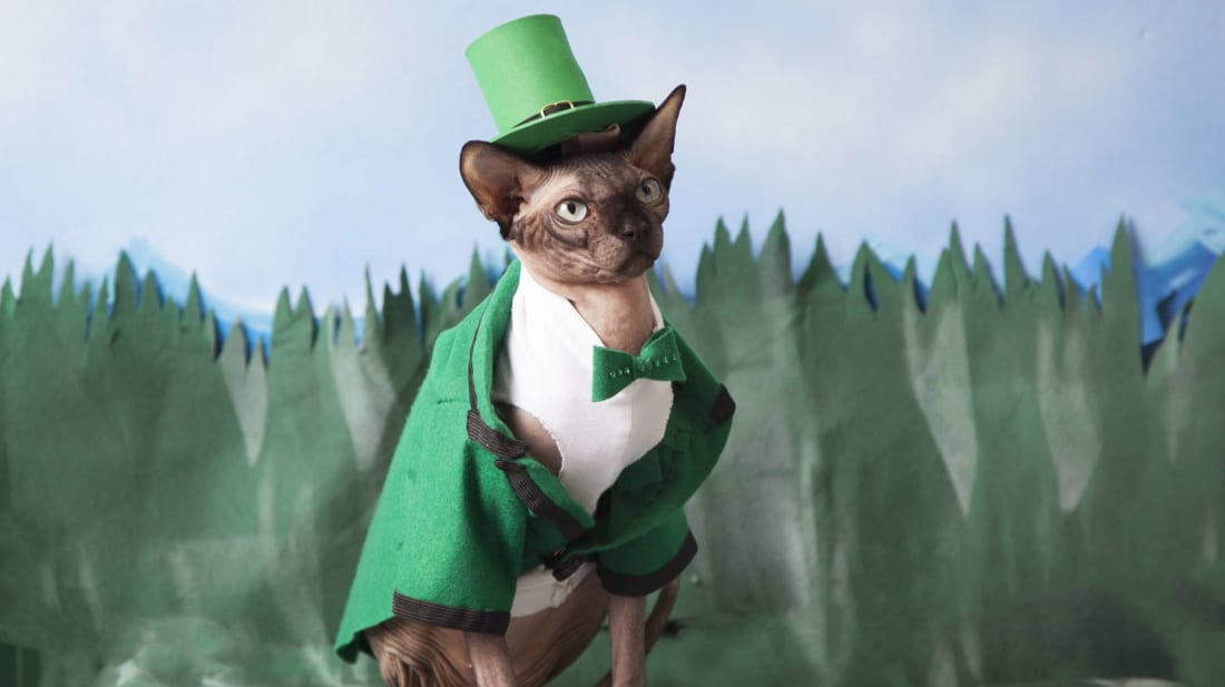 Like cats, leprechauns are often depicted as solitary creatures.