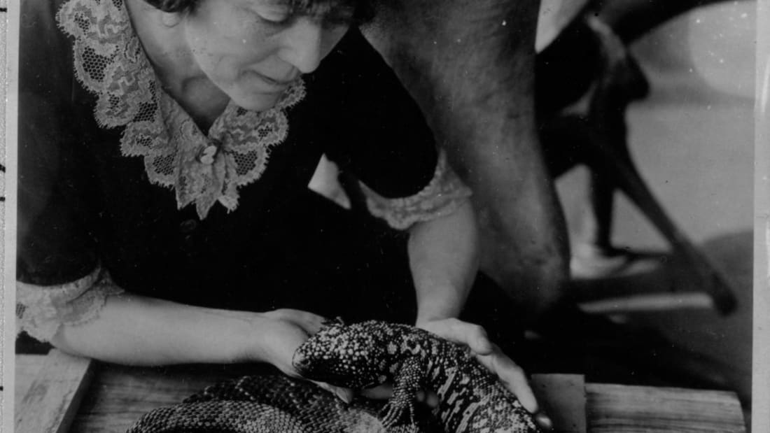 Grace Olive Wiley with reptiles