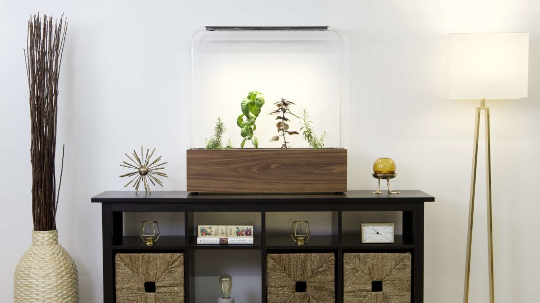 If your plants are low on water, this herb garden from GardenByte will send an alert right to your phone.