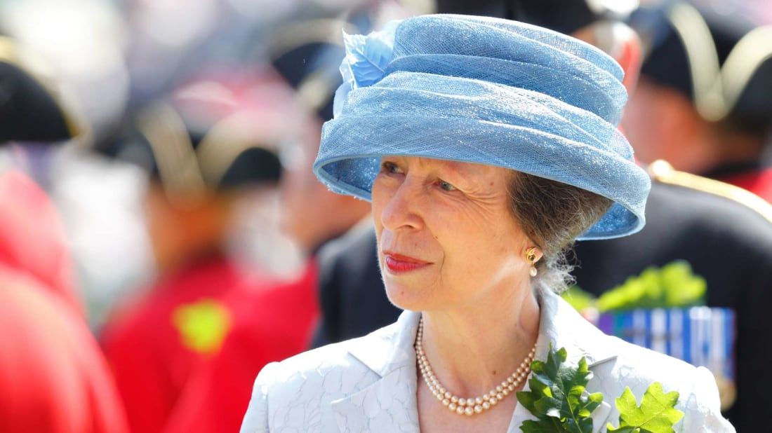 Princess Anne's aversion to handshakes isn't personal—it's logical.