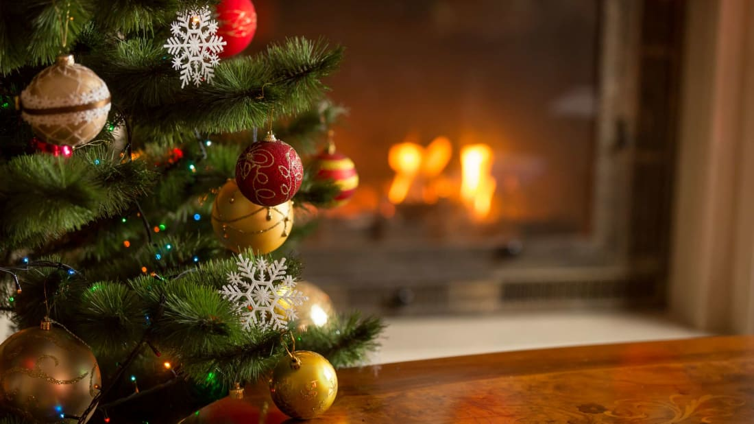5 Easier Ways to Water Your Christmas Tree
