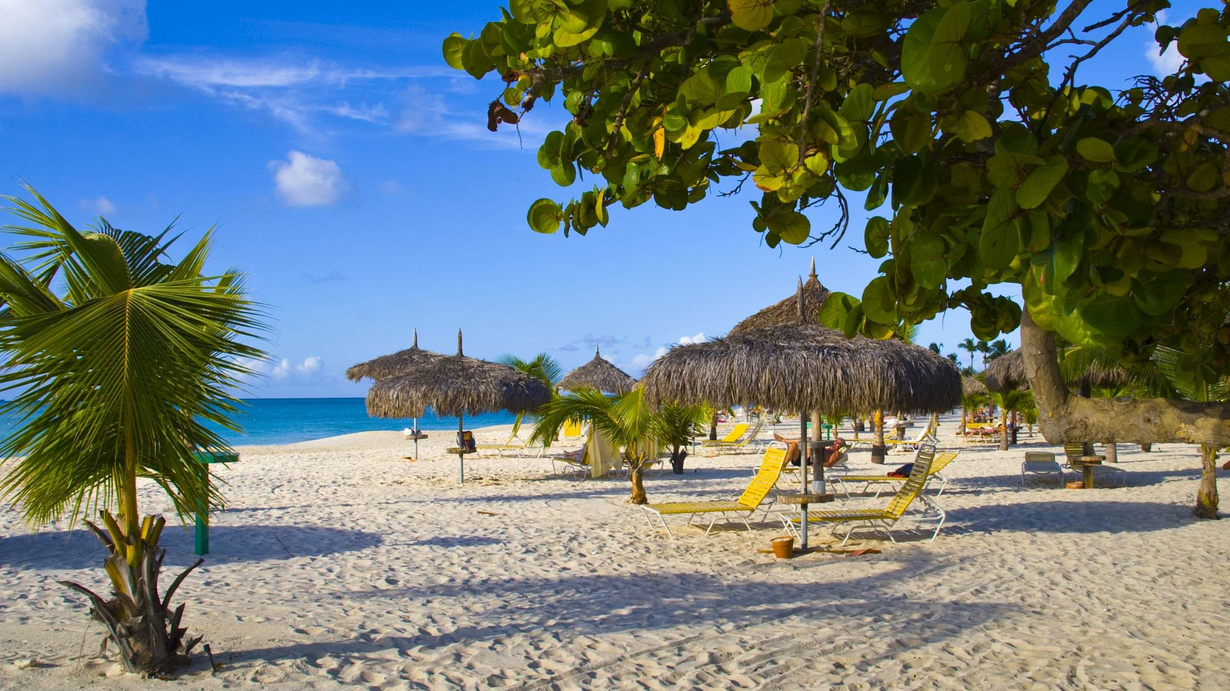 Aruba Is Inviting People Who Work From Home to Work From The Beach Instead