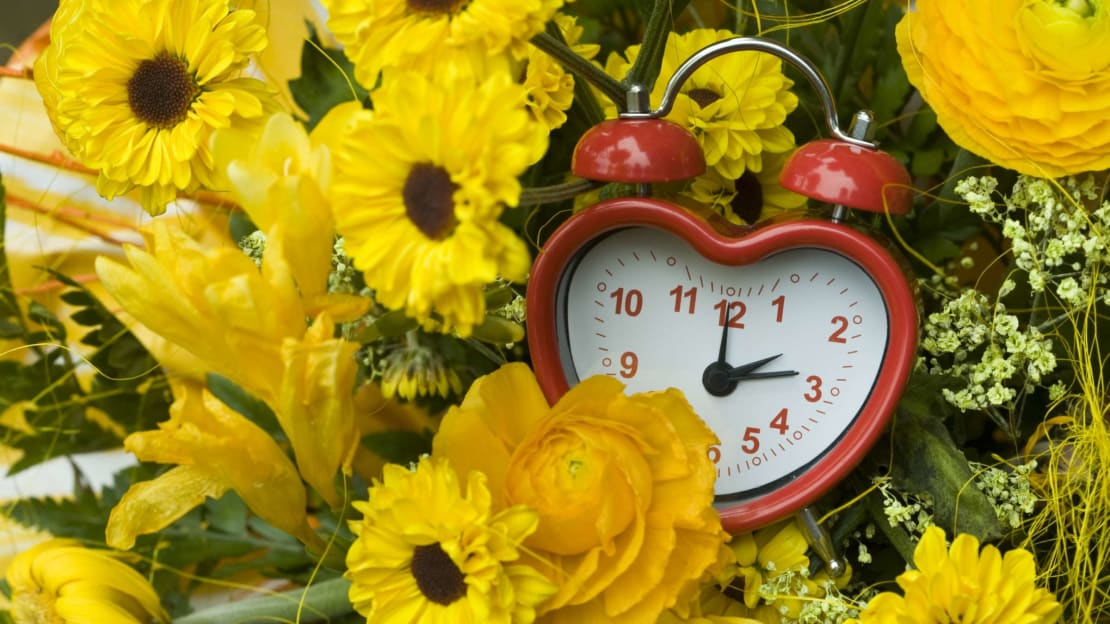The clocks will spring forward on March 14, 2021.