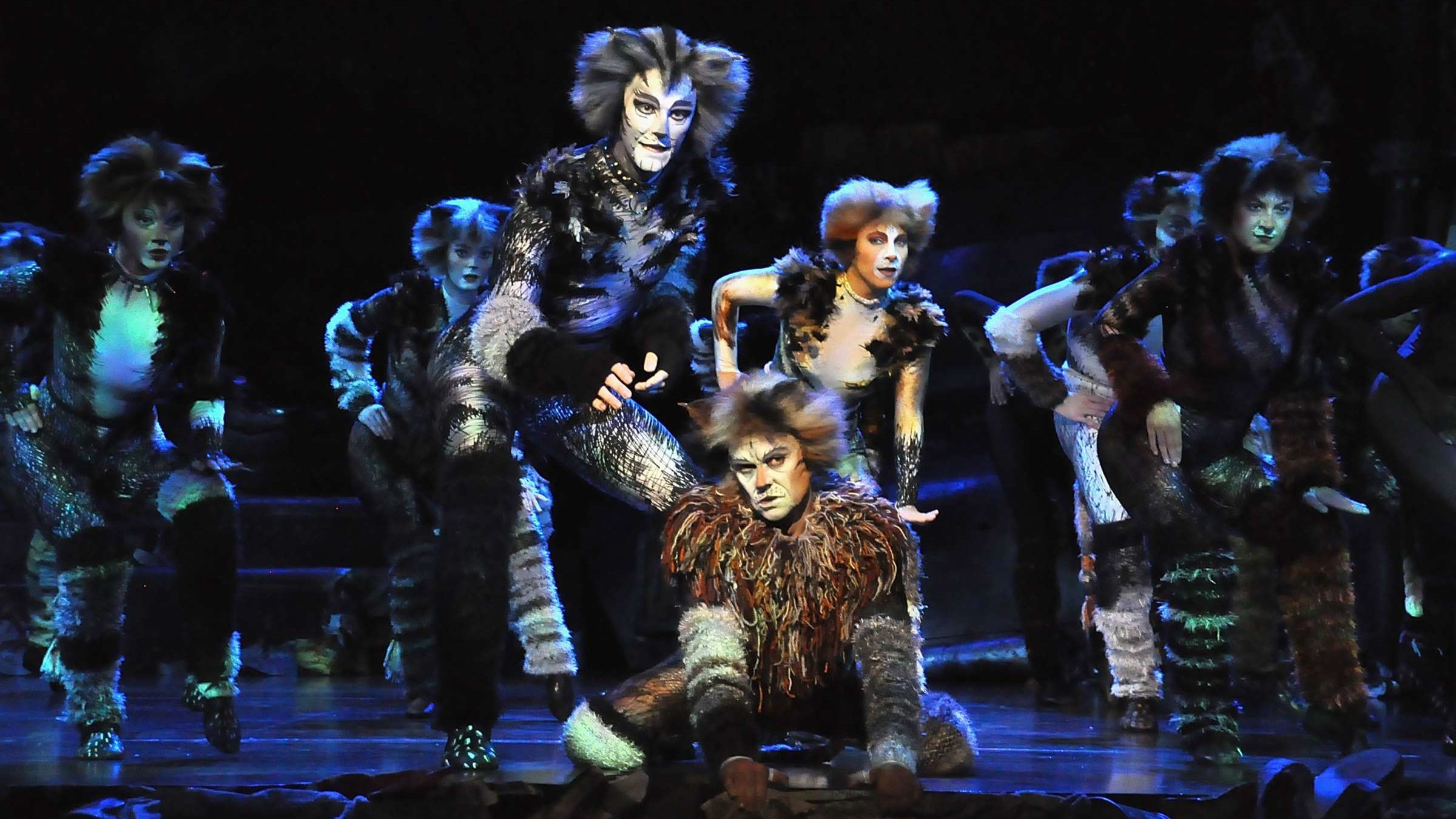 Cats Musical To Stream On Youtube Mental Floss