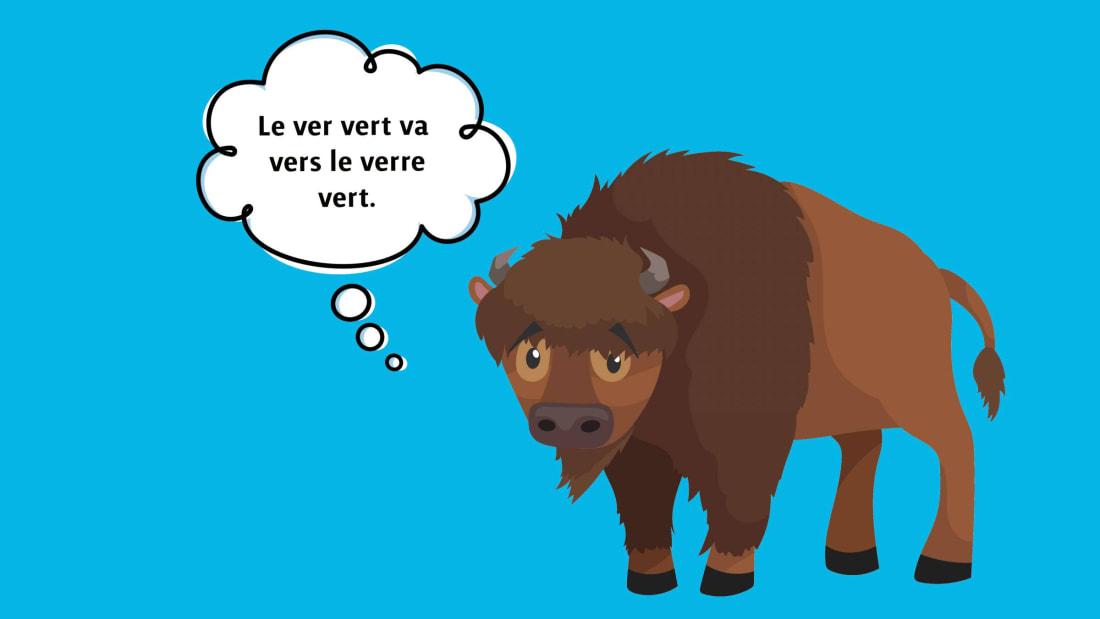 Zuki (speech bubble), pleshko74 (buffalo)/iStock via Getty Images Plus