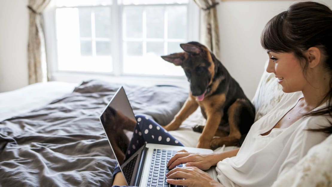 Two prized employees collaborating on an important project from home.