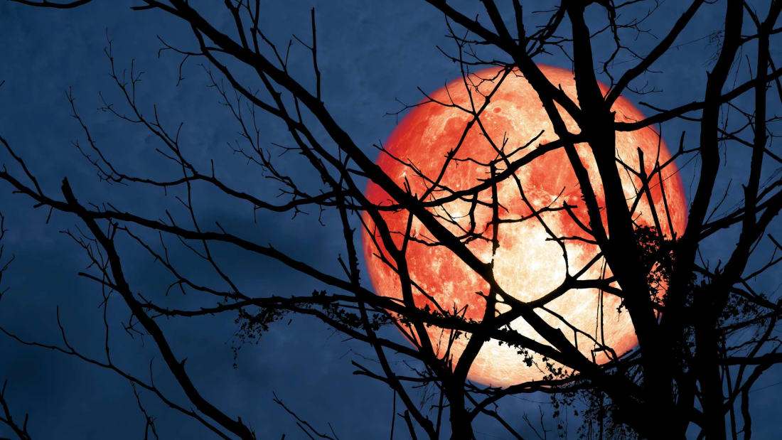 Full Moon Tonight Is A Hunter's Moon, Blood Moon