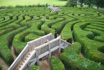 The Longleat hedge maze