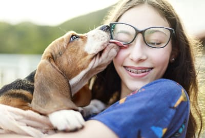 Need to give your glasses a quick cleaning? Dog licks are not recommended.