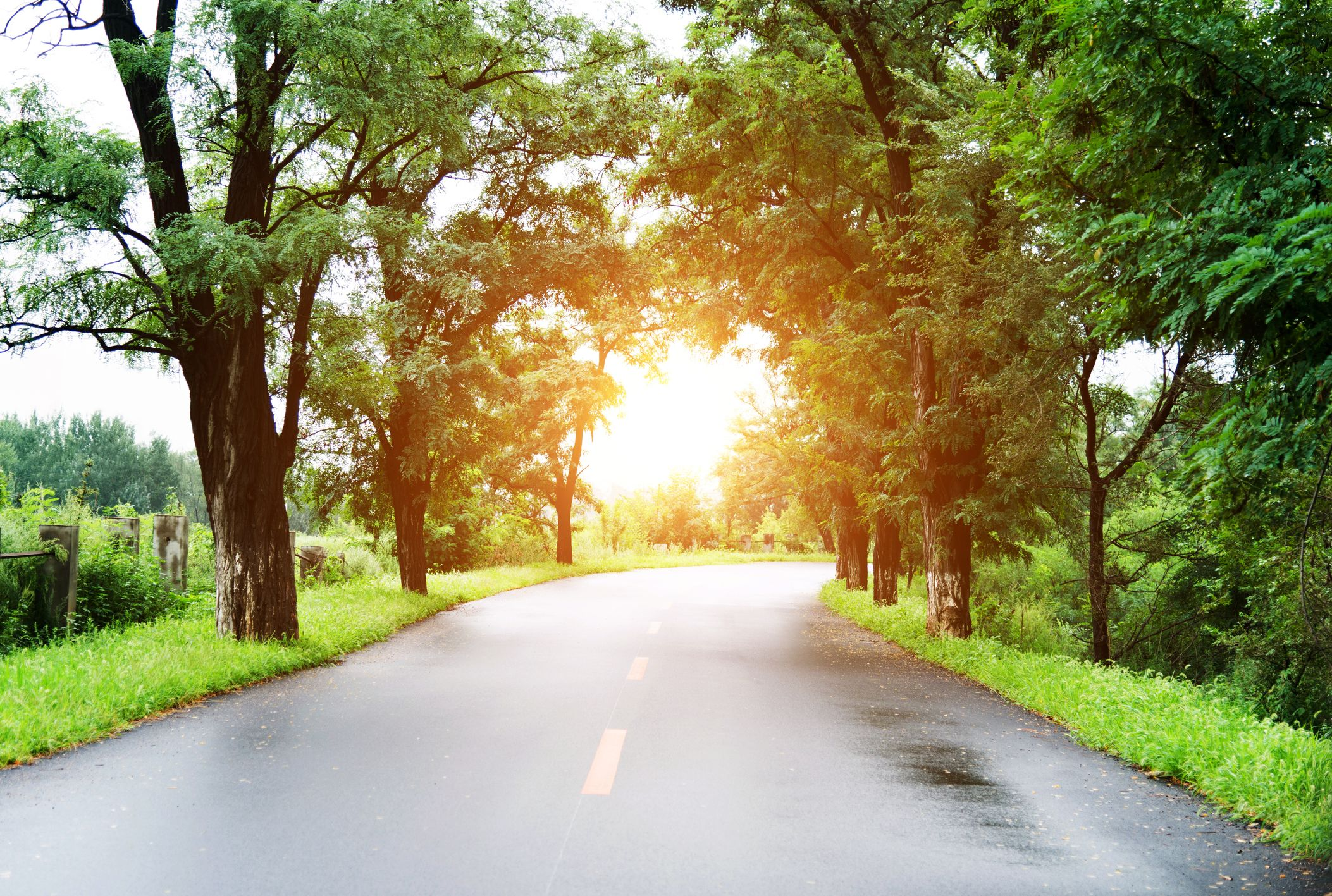 What If Two Roads Are Illusion What If >> Why Does The Road Look Wet On Hot Days Mental Floss