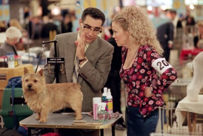 Eugene Levy and Catherine O'Hara star in Best In Show (2000).