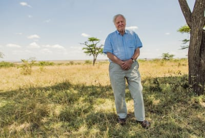 Sir David Attenborough pictured in the Maasai Mara, Kenya, in David Attenborough: A Life on Our Planet (2020).