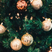 Can You Translate 'Merry Christmas' Into These Languages?