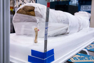 A glamour shot of the mummy at the Argonne National Laboratory.